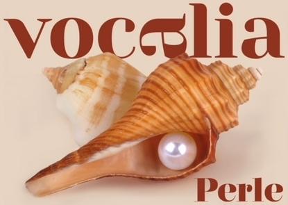Vocalia, Festival internazionale di  musica